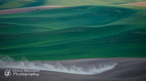 Palouse Fields #1137
