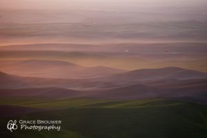 Palouse Fields #1156