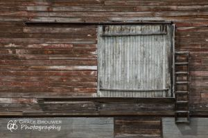 Structural Perspectives #1065