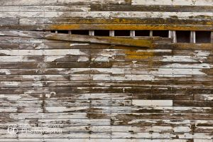 Structural Perspectives #0011